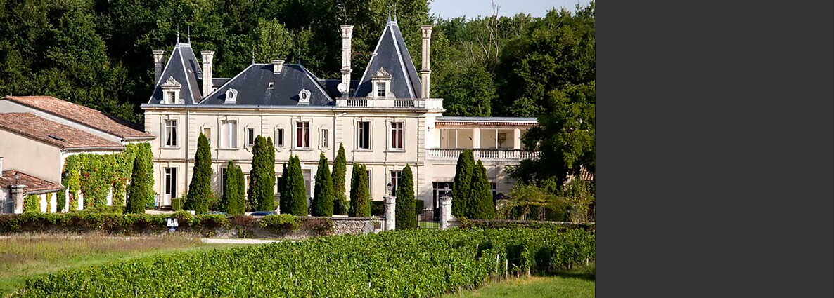 chateax-wine-tour-bordeaux